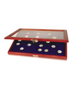 Wooden Display Case with Rounded Compartments